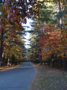 Northwoods,Fall,Autumn,Walk,winding road,Fall Colors,Eagle River,Wisconsin,meditate,exercise